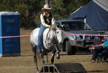 Noella on a grey horse going over an obstacle